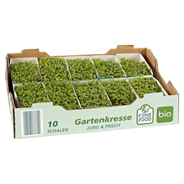 Fine Food Bio Kresse aus Deutschland 10 Stück Kiste