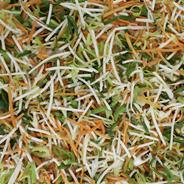 Esterhazy Gemüsemischung - 2,50 kg Beutel