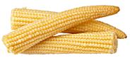 Horeca Select Maiskölbchen tiefgefroren, küchenfertig, ca. 4 - 10 cm lang 2,5 kg Beutel