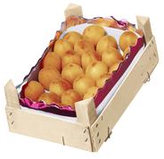 Aprikosen aus Spanien, 2 kg Kiste