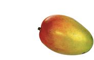 Fine Food Finestro Flugmango Stück