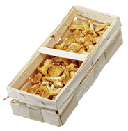 Horeca Select Pfifferlinge Weißrussland - 1,00 kg Korb