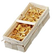 Horeca Select frische Pfifferlinge 1 kg aus Bulgarien Korb