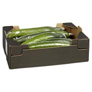 Gurken Niederlande - 12er Kiste