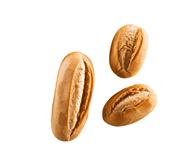 Horeca Select Weizenbrötchen tiefgefroren, 40 Stück à 60 g, fertiggebacken 3 x 2,4 kg Beutel