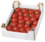Tomaten Sandwich Niederlande - 2,50 kg Stück