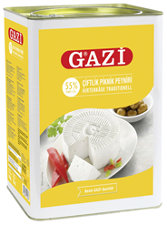 Gazi Feta Weichkäse, 55 % Fett i. Tr. 14 kg Kanister