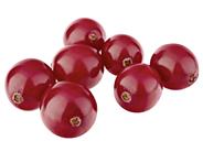 Horeca Select Preiselbeeren tiefgefroren, ganze Frucht 2,5 kg Beutel