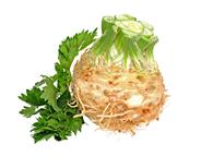 Horeca Select Knollensellerie tiefgefroren, küchenfertig, gewürfelt, 10 x 10 x 10 mm 4 x 2,5 kg Beutel