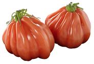 Tomaten Ochsenherz Niederlande - 1,50 kg Kiste