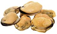 Horeca Select Muschel-Fleisch tiefgefroren, mit Glasur, gekocht, Wildfang, ca. 170 - 255 g Stück/Beutel 850 g Beutel