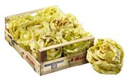 Radicchio Castelfranco 2 kg Kiste