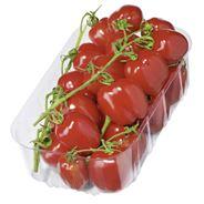 Tomaat San marzano mini 500 gram