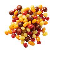 Snack tomaat mix emmer 500 gram