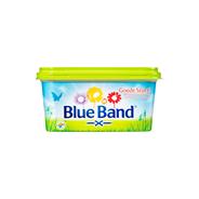 BLUE BAND GOEDE START 500GR.