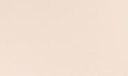 Dunicel Napperon champagne 84 x 84 cm 20 stuks