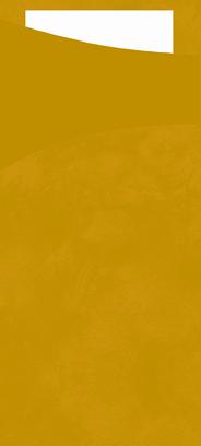 Duni Sachetto's kiwi 2-laags 100 stuks