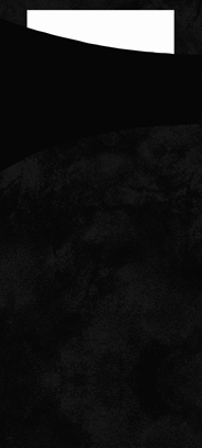 Duni Sachetto's zwart 2-laags 100 stuks