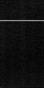 Duniletto Servetten zwart 40 x 33 cm 65 stuks