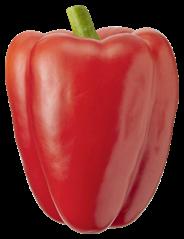 Bio+ Paprika rood 10 stuks