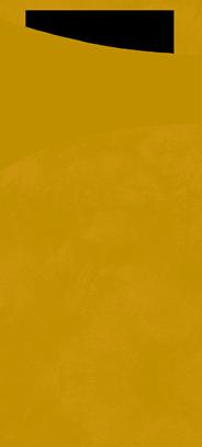 Duni Sachetto's kiwi 100 stuks