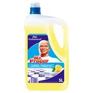 Mr. Proper Professional Allesreiniger Citroen 5l