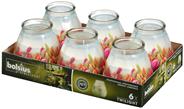 Bolsius Twilight Kaarsen tulpen 6 stuks