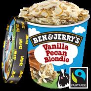 Ben & Jerry's Pint Vanilla pecan blondie 500 ml