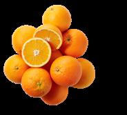 Metro Chef Persinaasappels 5 kg