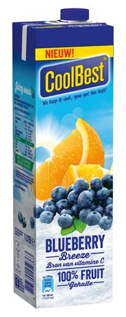 CoolBest Blueberry breeze 1 liter