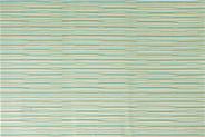 Cosy & Trendy Placemat PVC groen 45 x 30 cm