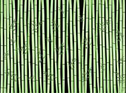 Tork Placemat 31 x 42 cm bamboo 500 stuks