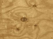 Tork Placemat 31 x 42 cm wood 500 stuks