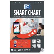 Oxford Smart Charts flipoverblok 65 x 98 cm ruit 20 vel 3 stuks