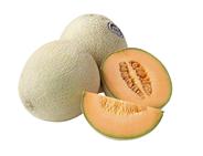 Meloen Cantaloupe mt6