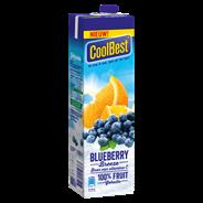 CoolBest Blueberry Breeze 1 L