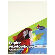 Beniamin Papier wizytówkowy A4 20 sztuk