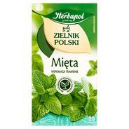 Herbapol Zielnik Polski Mięta Herbatka ziołowa 40 g (20 torebek)