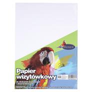 Beniamin Papier wizytówkowy biały A4 20 sztuk