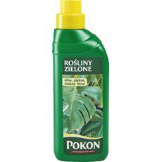 Pokon nawóz do roślin zielonych 500 ml