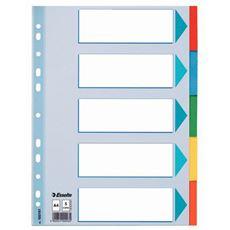 Esselte Przekładki kartonowe z kartą opisową mix kolorów A4 5 sztuk