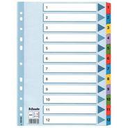 Esselte Mylar Przekładki kartonowe 1-12 różne kolory A4