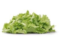 Salát Insalatina nepraný čerstvý 1x125g vanička