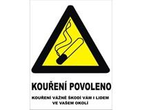 Samolepka Kouření povoleno 120x160mm 1ks