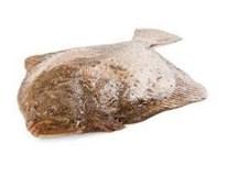 Kambala velká chlaz. váž. 1x cca 1-1,5kg