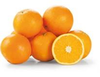 Pomeranče Navel 4/5 čerstvé váž. 1x cca 10kg