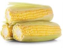Kukuřice sladká neloupaná chlaz. 1x1ks