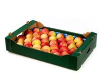 Jablka Šampion 75+ I. čerstvá 1x6kg karton
