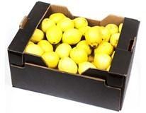 Citrony Primofiore 3/5 I. čerstvé 1x9kg karton