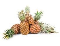Ananas Sweet Gold 1800g+ čerstvý 1x1ks